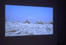 MODENA ARTI VISIVE: I LAVORI DI YAEL BARTANA A PALAZZO SANTA MARGHERITA